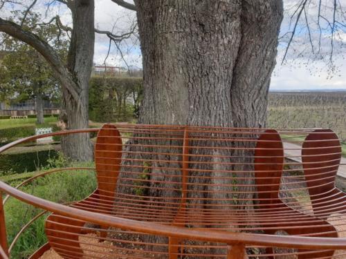 banc autour d'un arbre Chateau de Pizay 2